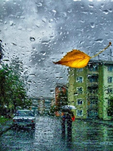 Картина Осень фото